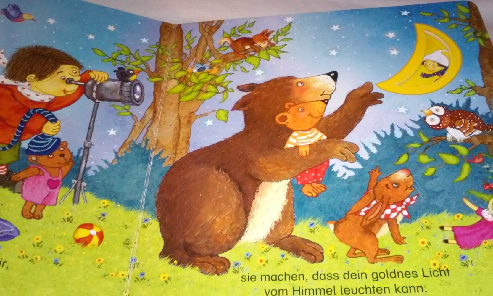 gute nacht goldner mond kinderbuch pappbilderbuch. Black Bedroom Furniture Sets. Home Design Ideas