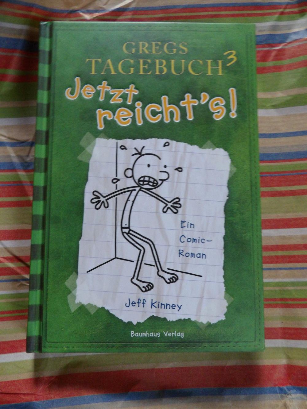 Gregs Tagebuch3