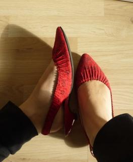 catsinredshoes